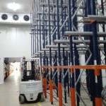 Instalación De Paneles Y Equipo De Frío De 40 Cv Para Cámara De Conservación  De Tortitas De Chocolate En Grupo Siro Jaén